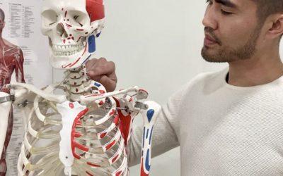 Scalenes Muscles and Counterstrain Technique – Jonathan Paez, RMT